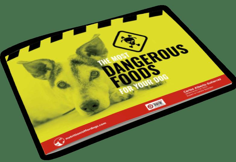 most-dangerous-food